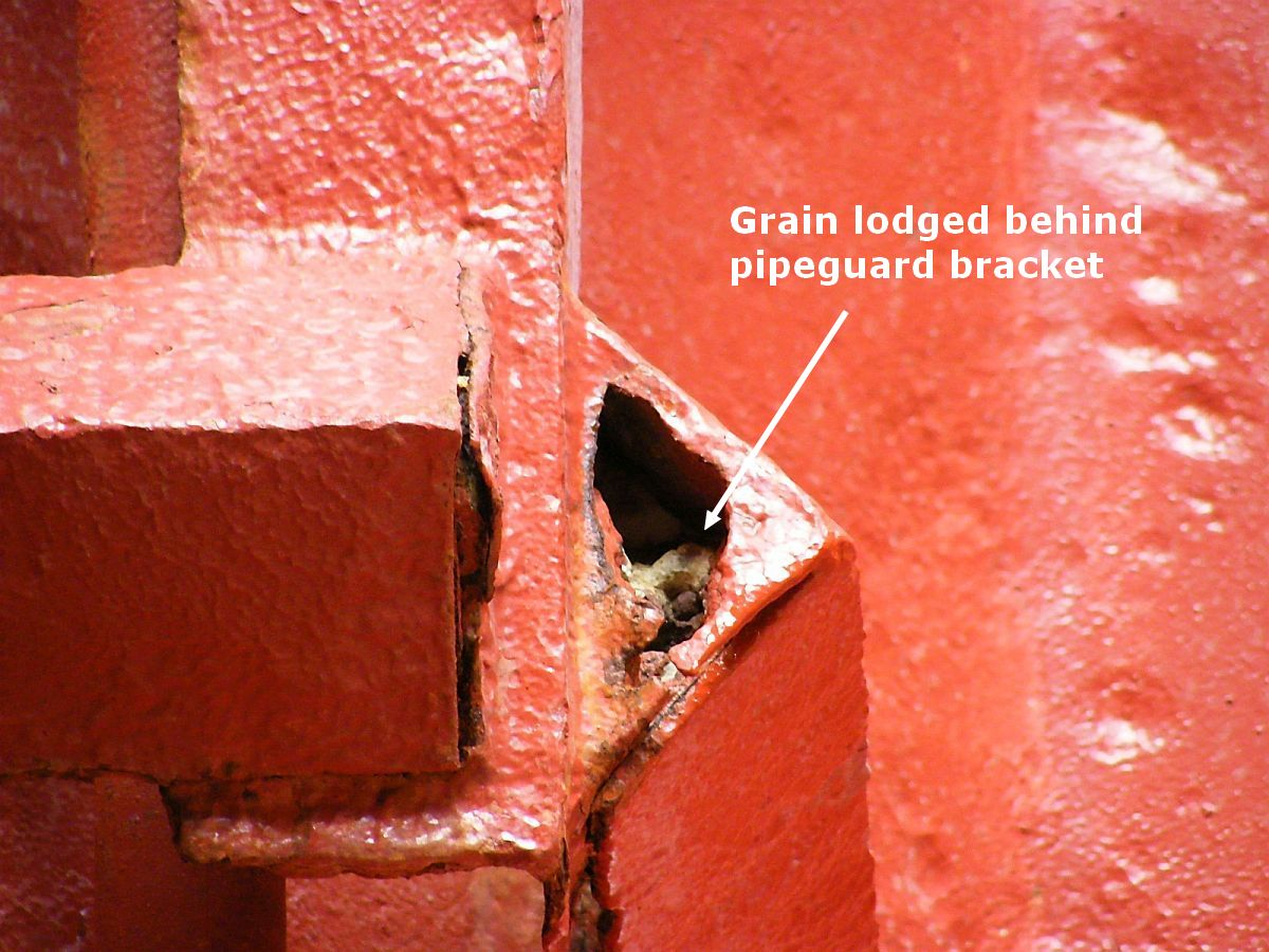 grain lodged behind pipe bracket in ship's cargo hold