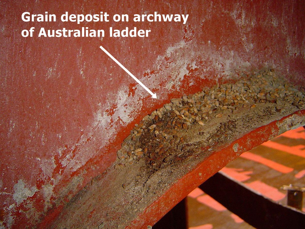 cargo residue and debris on australian ladder archway